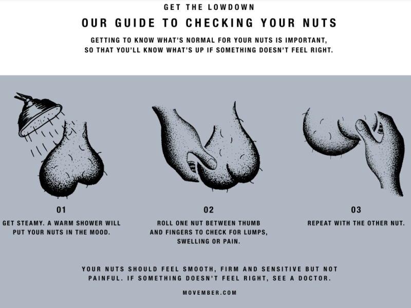 zelfonderzoek zaadbalkanker Afbeelding: Movember