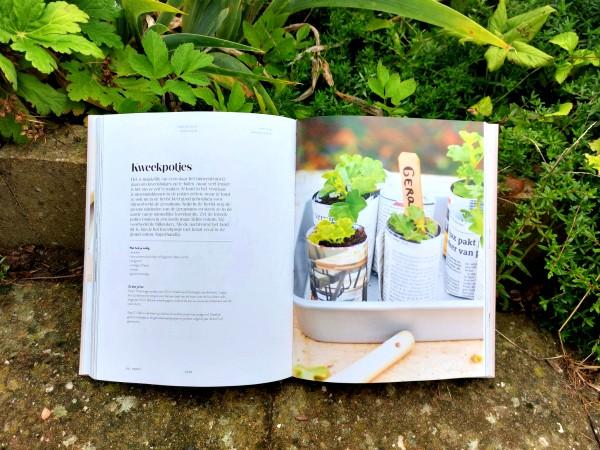 smûk, smuk, friesland, creatief, huiselijk, boek, kweekpotjes